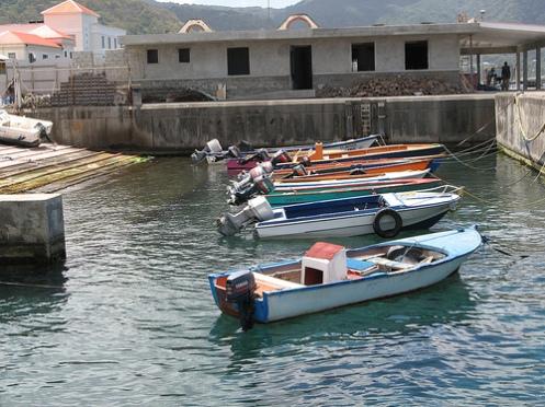 safe harbor provisions